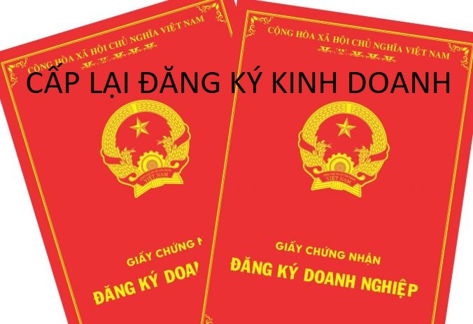 Thu-tuc-cap-lai-giay-dang-ky-doanh-nghiep